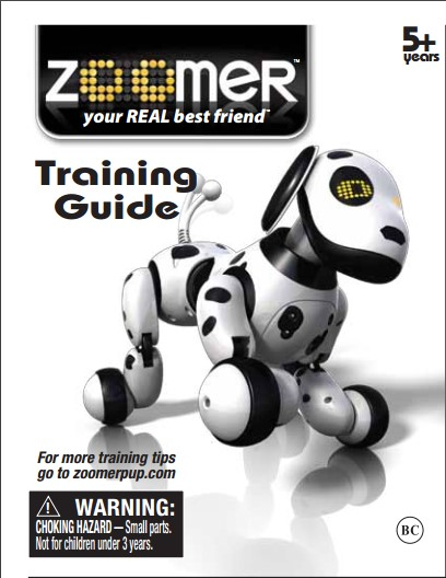 zoomer-instructions-1