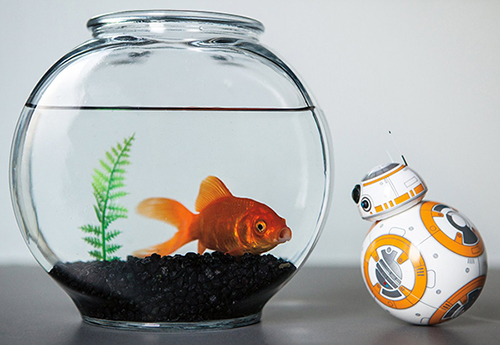 sphero star wars bb-8 patrol